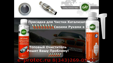 kartinka-new-CatClean-GAT
